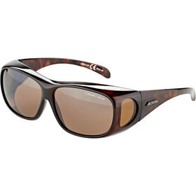 Alpina Sunglasses Overview, havana/brown mirror